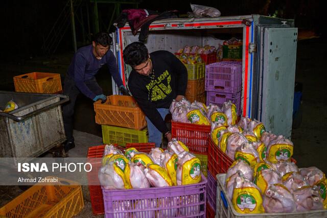 تمایل فروش مرغ منجمد به خوزستان / احتمال بهبود وضعیت در هفته آینده